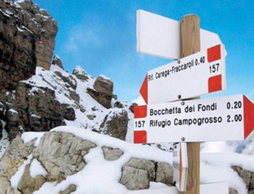 Alpinismo ed escursionismo