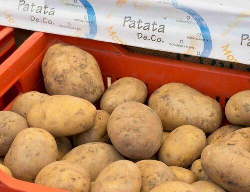 La Patata Monte Faldo